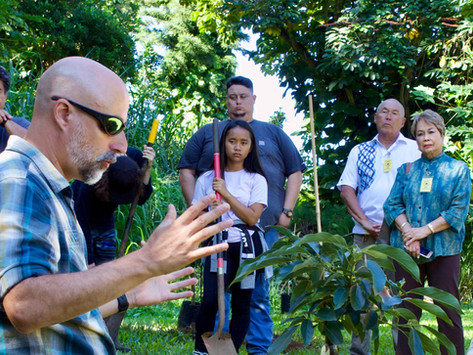 Organizations That Plant Trees Go Out on a Limb for Forests, Communities