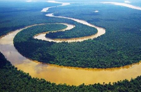 CBC e Fórum Amazonense de Mudanças Climáticas desenvolve parceria para indicadores de MRV