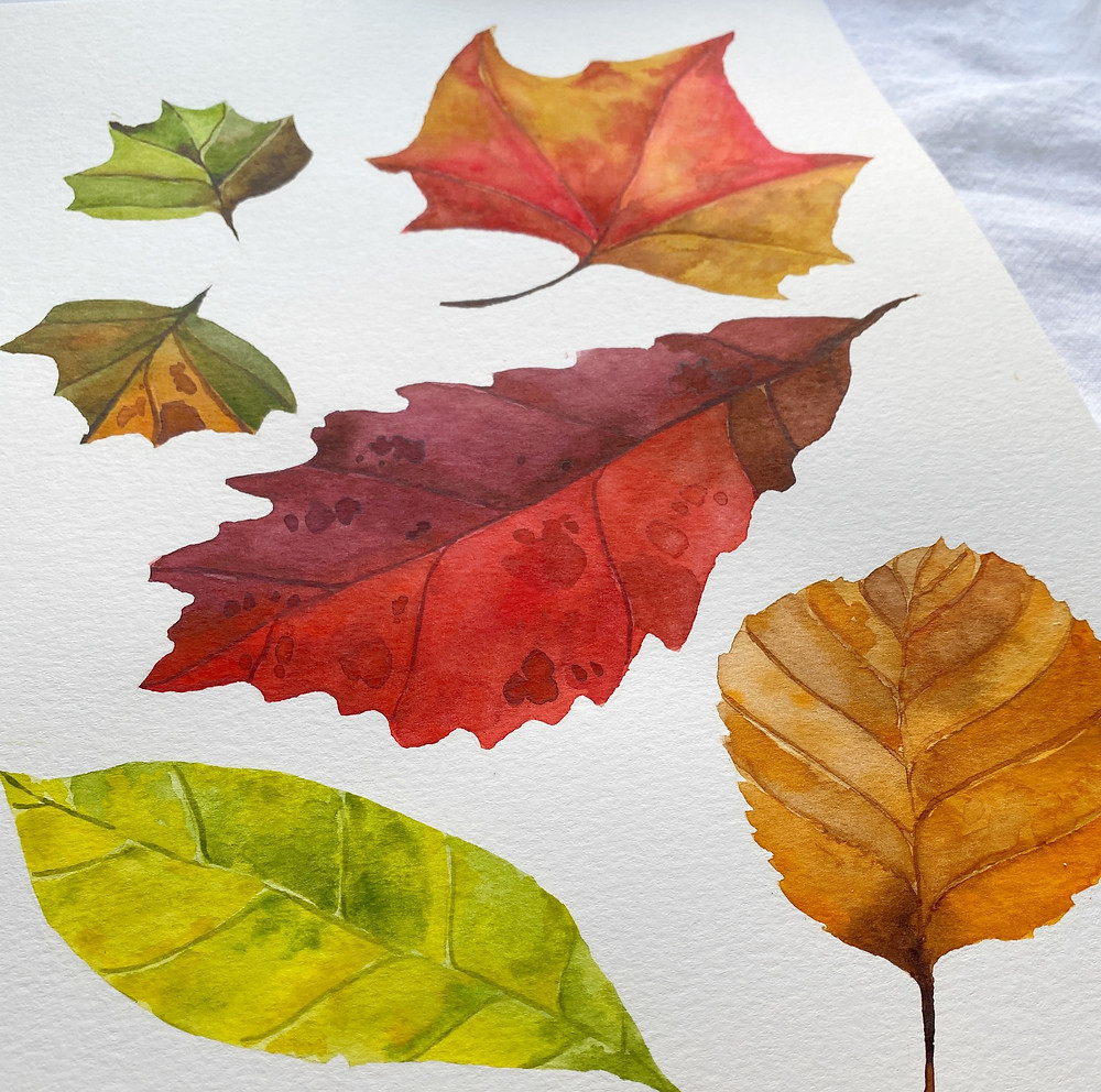 Fall Watercolor Leaves