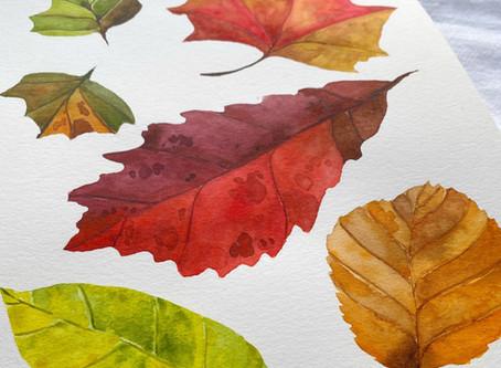 Fall Watercolor Leaves at Inn at Grace Winery