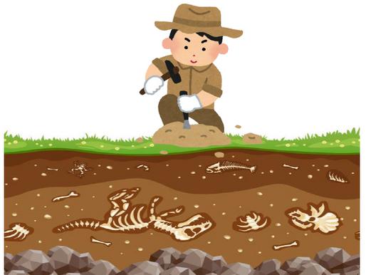 日曜日特別企画「化石発掘体験」