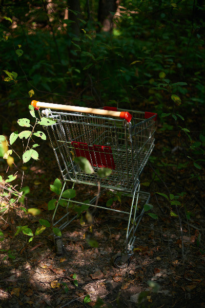 remarketing to abandoned cart shoppers