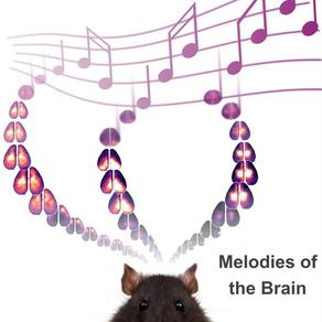 Low-Dimensional Spatiotemporal Dynamics Underlie Cortex-wide Neural Activity