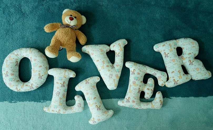 stuffed fabric letter to spell Oliver for children's or baby's room