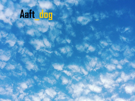 "Making ""Aaft_dog"" Tunes"