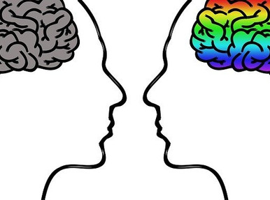 Is There A Case In The Form Of Male Brain And Female Brain? What Does Science Say About This?