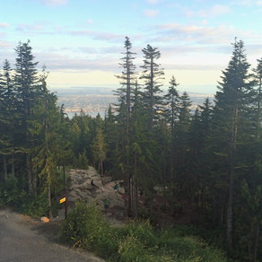 Grouse Grind (North Vancouver, BC, Canada) ♦︎