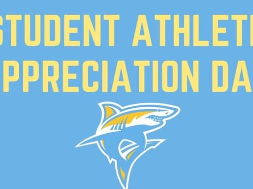LIU Promise Highlights Student-Athletes