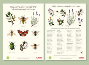 växter för bin