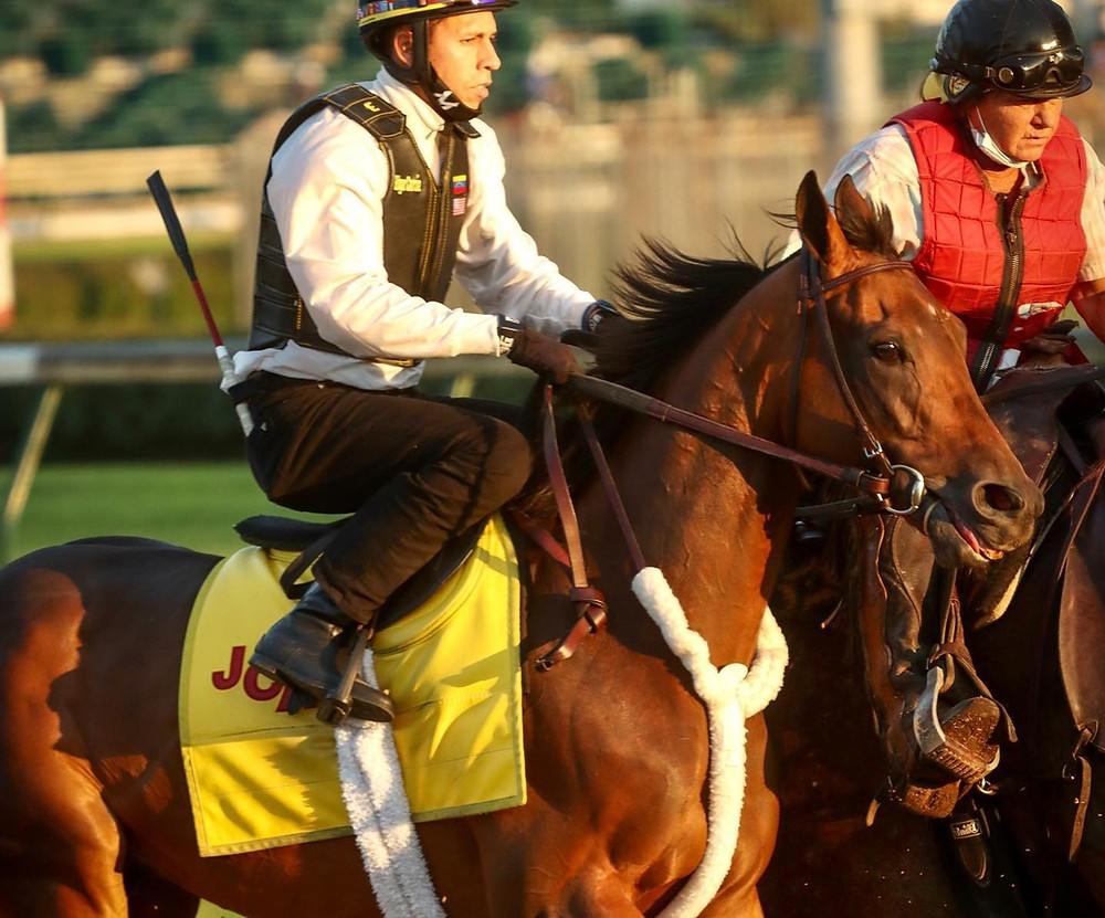 Kentucky Derby contender King Guillermo at Churchill Downs