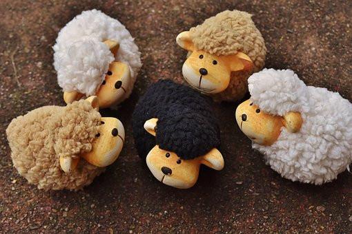 oveja negra, diferente, libertad, sé el jefe, hectorrc.com