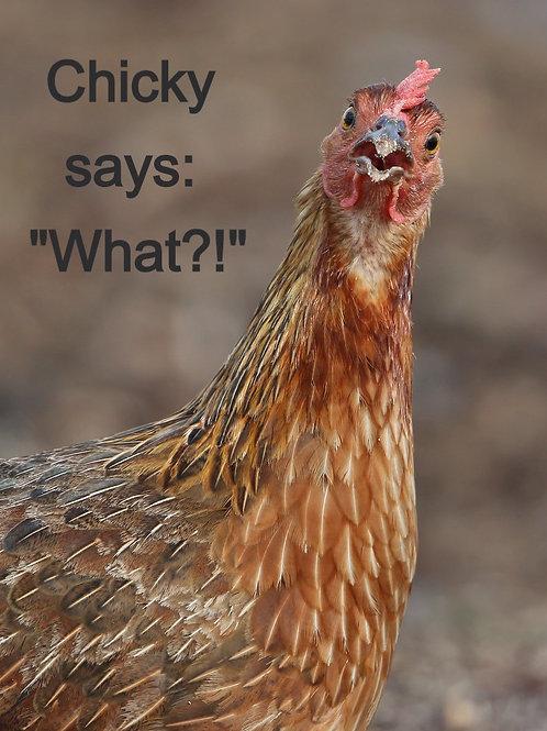 🥚 EGG 🥚 VARIETY 12Pack - 8-Chick / 4-Duck  = 1 Dozen Nature Fed Eggs