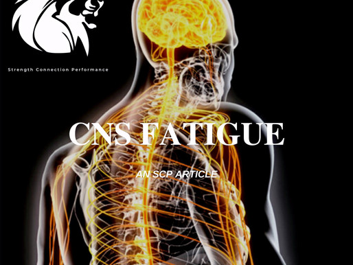 THE CENTRAL NERVOUS | MONITORING FATIGUE