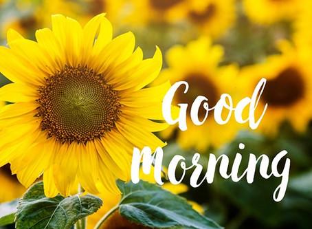 Good Morning Year 6