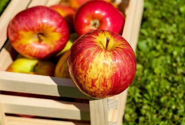 Jablka zdraví a hubnutí