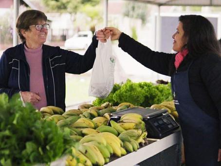 Feira de alimentos saudáveis completa um ano com várias atrações neste sábado