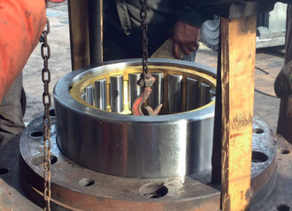 Rolling bearings for coal pulverizer