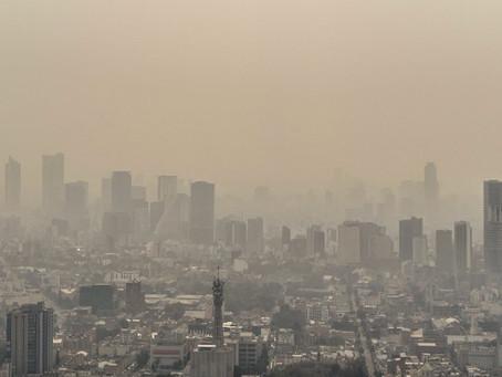 Rincón del Foráneo| Salvar el planeta no solo depende de cambiar nuestros hábitos