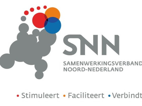 "SNN awards ""VIA"" subsidy to Reperio"