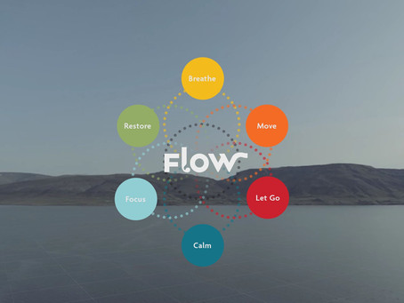 Meditate in VR - How To Access Flow