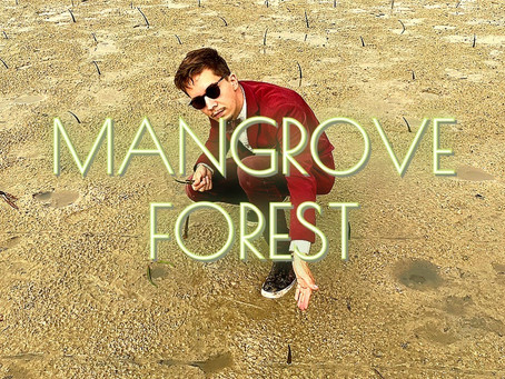 Plant a Mangrove Forest