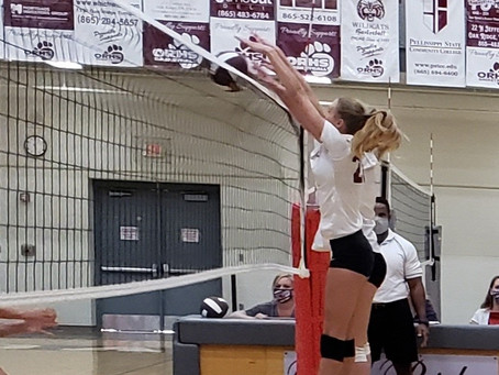 Lady 'Cat Volleyball tame the Concord Christian Lions