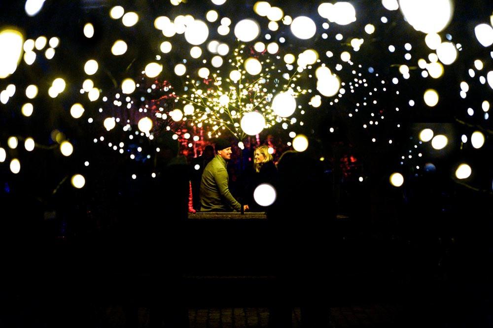 #sofieroslottspark #höstljus #ljusevenemang