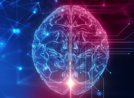Principio de plasticidad neuronal: ¿El cerebro nace o se hace?