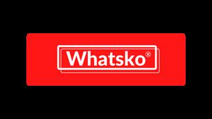 WhatskoGame Buy all retro game consoles