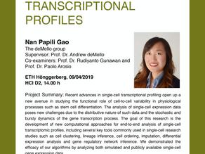 PhD public presentation by Nan Papili Gao