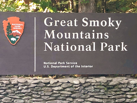 Fly Fishing for Trout in Great Smoky Mountains National Park