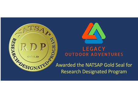 NATSAP board makes it clear to consumers that not all programs are alike