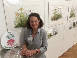Evaluating Nature - The Role of Botanical Art