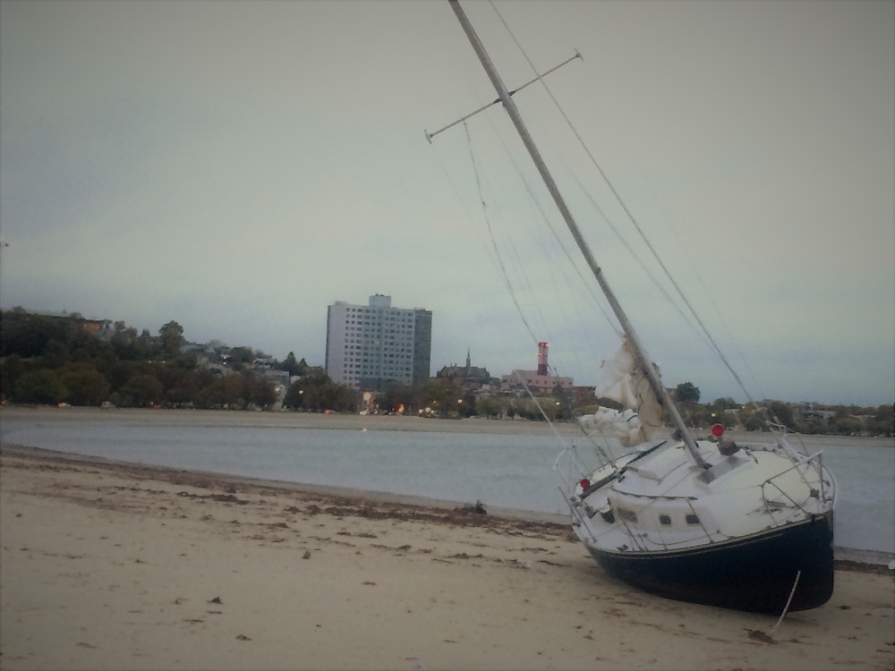 Shipwrecked on Carson Beach