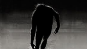 What's Hiding in the Woods? The Legend of the Fouke Monster
