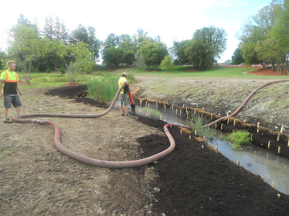 Entire installation was terra-seeded with a native riparian meadow seed mix.