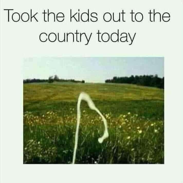 Took the kids out to the country today Meme