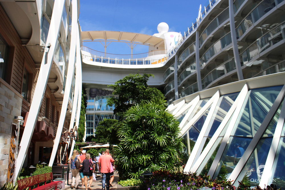 Live planted garden on board the Allure of the Seas