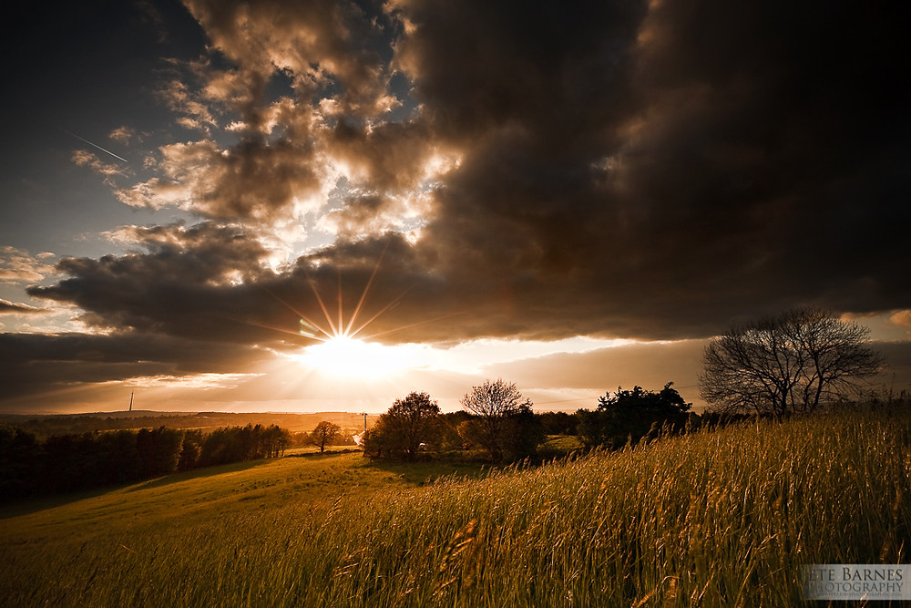 Landscape photo of a wheat field before the rain at sunset