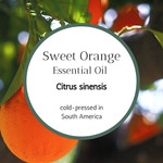Sweet, Sweet Orange Essential Oil