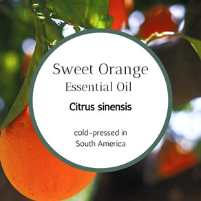 Sweet, Sweet Orange Essential Oil