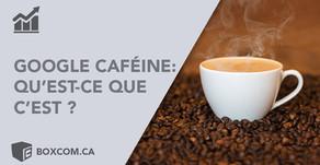 Optimiser son référencement | À propos de «Google Caffeine»