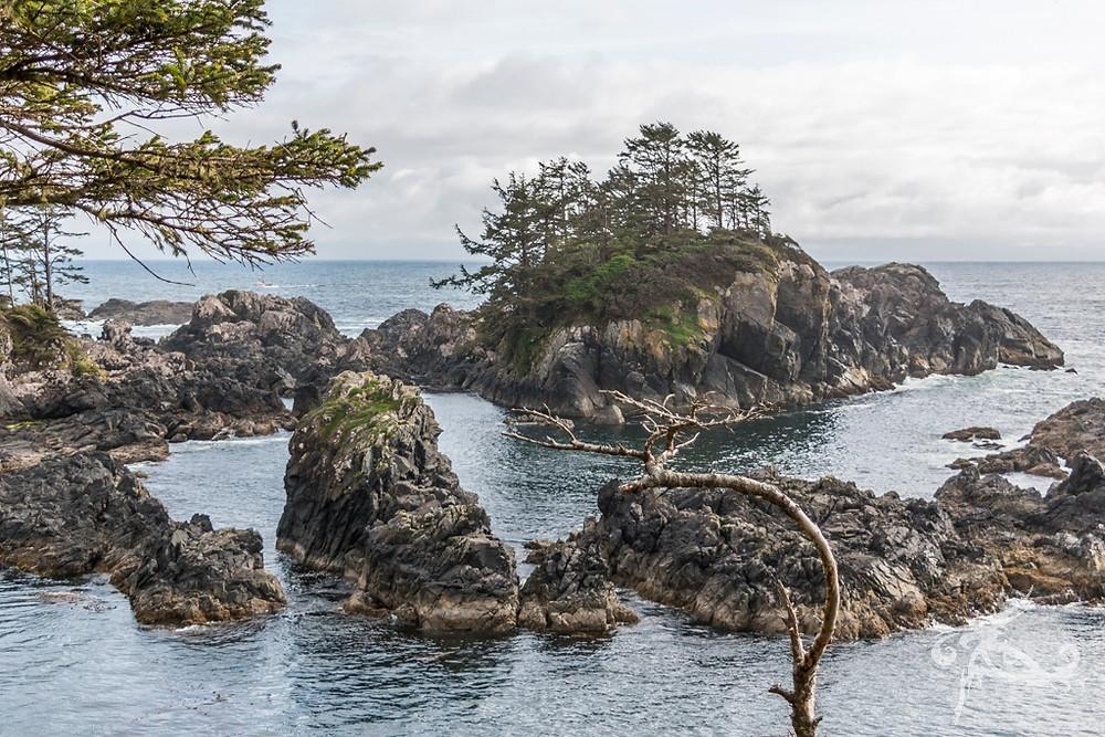 Canada Adventure Tour Ucluelet Wild Pacific Trail Lighthouse loop best destination Canada tour company