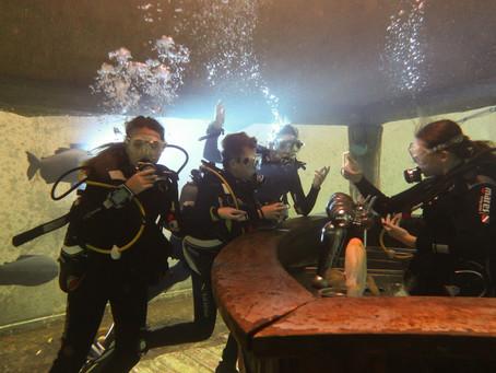 TODI - Fresh Water Fish Confined Dive Site   Beringen, Belgium