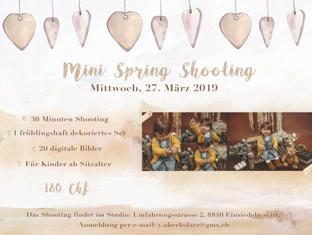 Mini Spring Shooting Tag