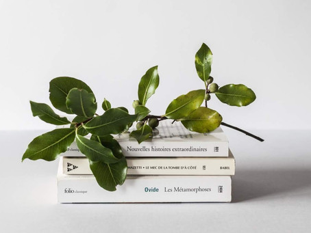 get organized: books