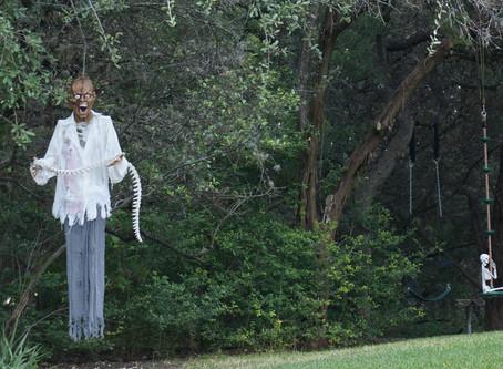 Scary Yard !!!