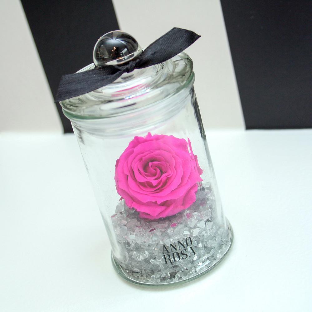 Infinity Rose Jars