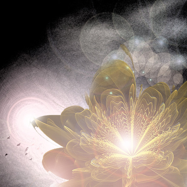 What can the 4A's of Resonant Mindfulness do for me?