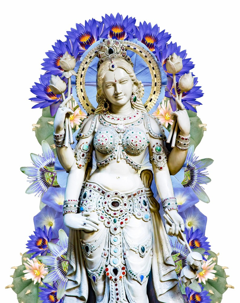 Shakti Blissful Botanicals Logo depicting the Goddess Shakti surrounded by entheobotanicals